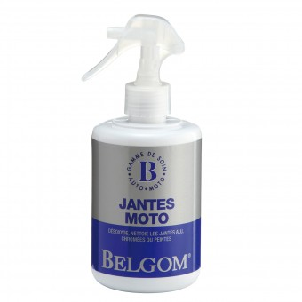 Cleaning and Maintenance Belgom Jantes